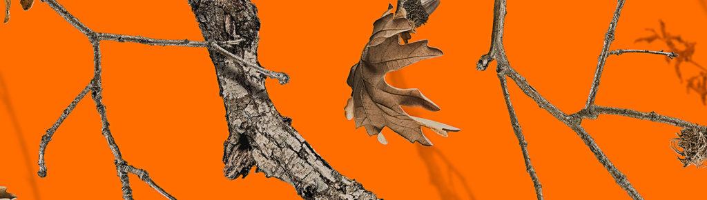 warn color orange for hunting