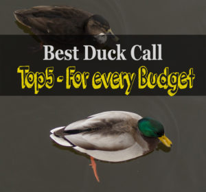 best duck call review and buying guide