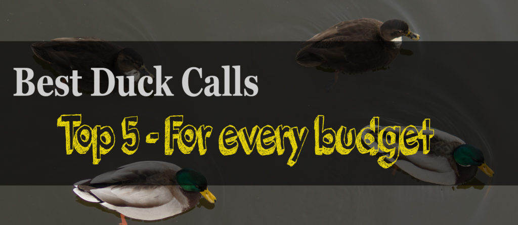 The 5 Best Duck Calls