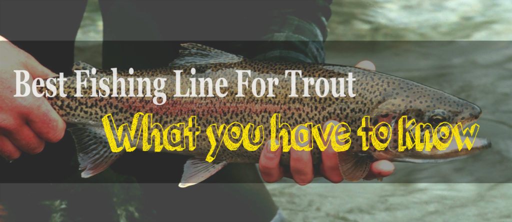 trout caught with fishing line