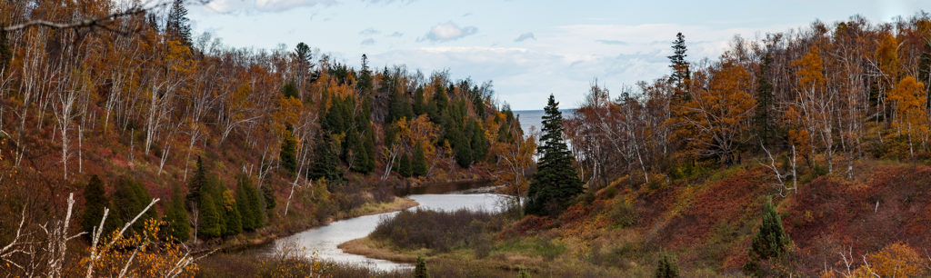 northern minnesota landscape