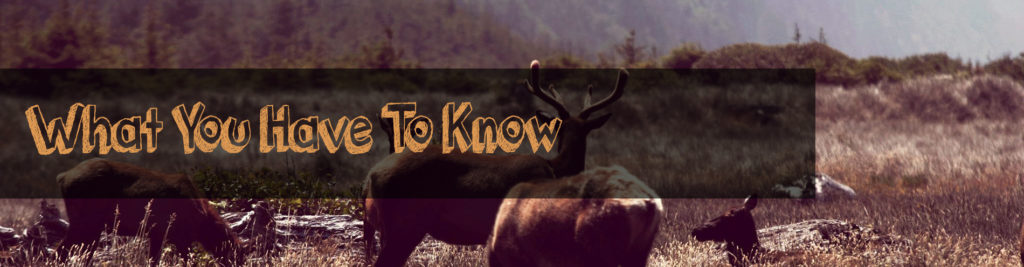 what you have to know about cheap hunting boots