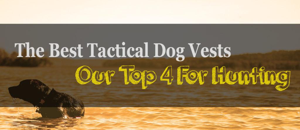 The 4 Best Dog Hunting Vests Of 2018