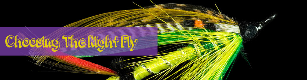 how to choose the right fly
