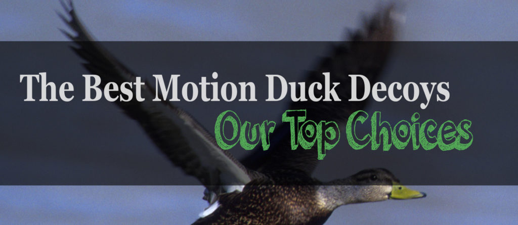 The 4 Best Motion Duck Decoys