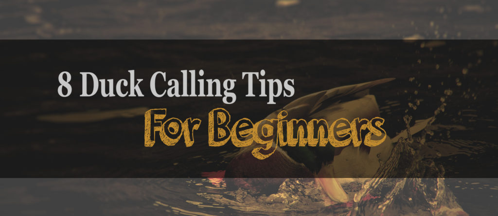 8 Duck Calling Tips For Beginners