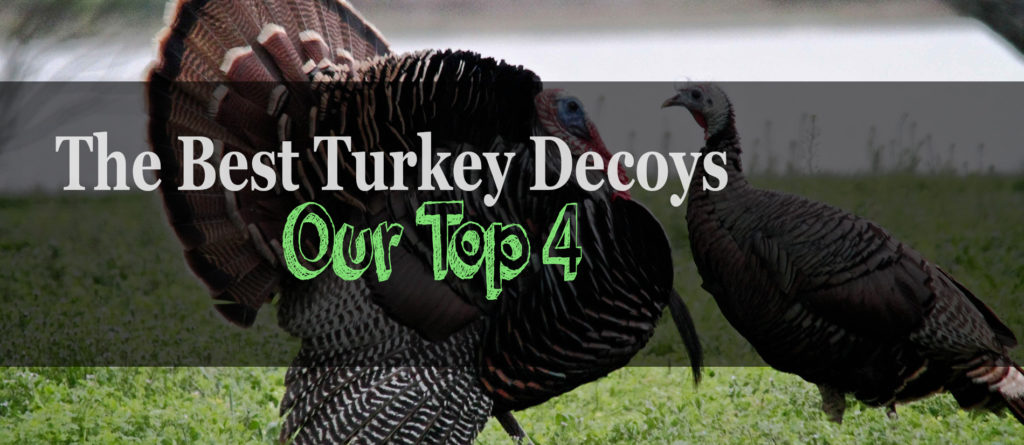 The 4 Best Turkey Decoys