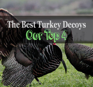 best turkey decoy review