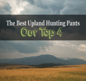 best upland hunting pants review