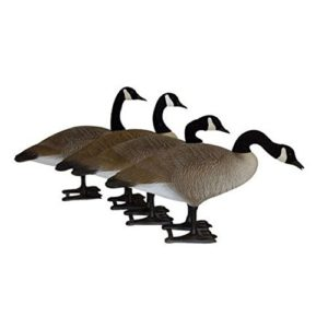 Big Foot Full Body Goose Decoys review