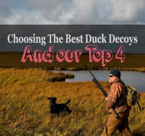 best duck decoys review
