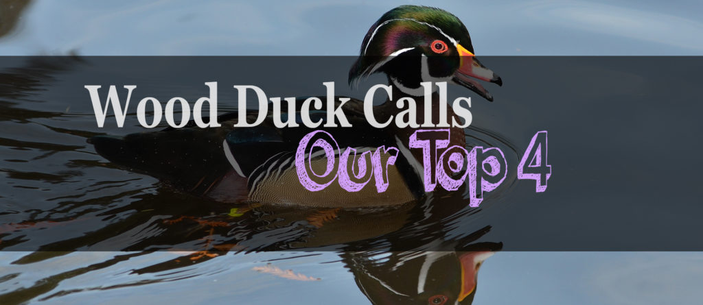 The 4 Best Wood Duck Calls