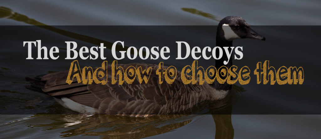 The 4 Best Goose Decoys