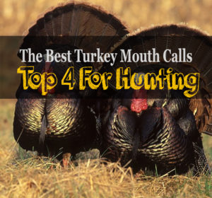 The 4 Best Turkey Mouth Calls