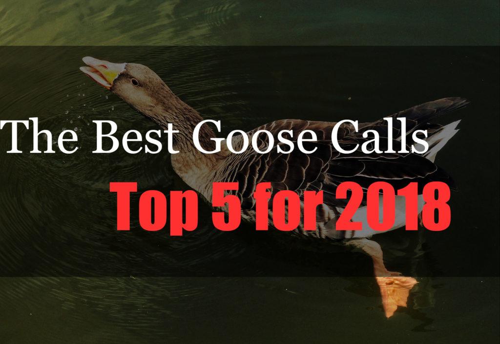 Best Goose Calls of 2018